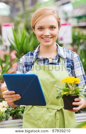 people, gardening, technology and profession concept - happy woman or gardener with tablet pc computer and flowers in greenhouse