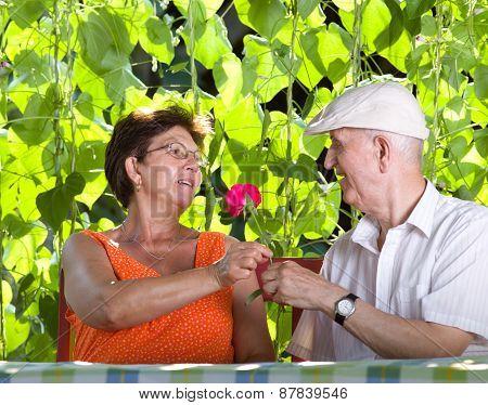 Senior Couple Romance