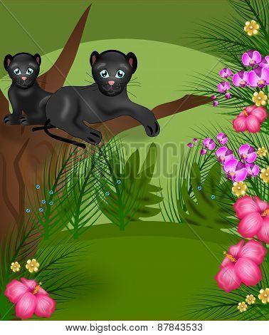 Jungle Panthers