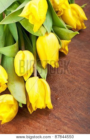 Yellow tulips on a wooden