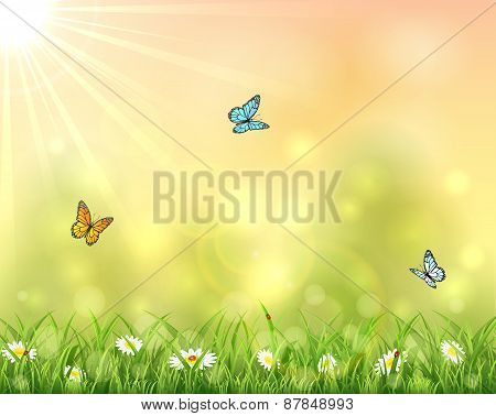 Nature Background With Three Butterflies