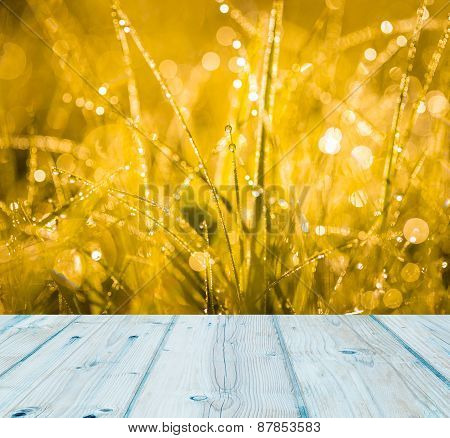 Grass With Water Droplets At Sunrise And Wooden Planks Floor