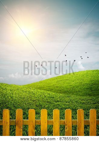 Beautiful grass hills with birds and a wooden fence under sunny weather