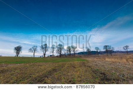 Early Spring Meadow With Barbed Wire Fence At Sunset