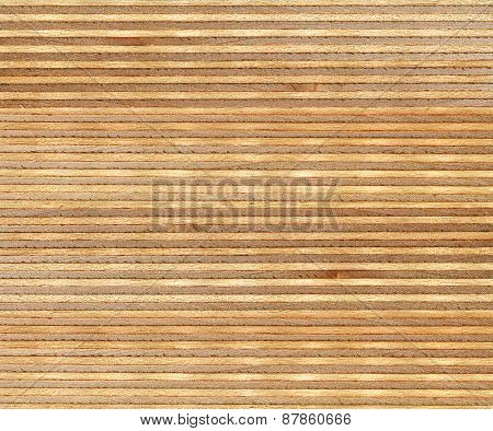 high resolution birch wood section texture