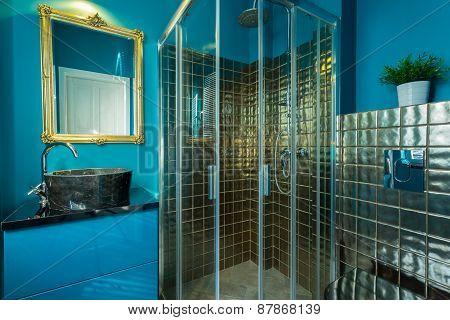 Exclusive Bathroom With Blue Walls