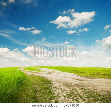 Country road through the fields, vector