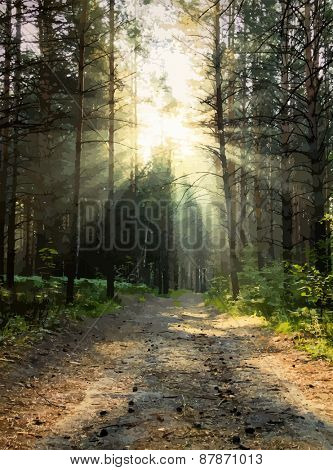 sunrise in the woods, vector