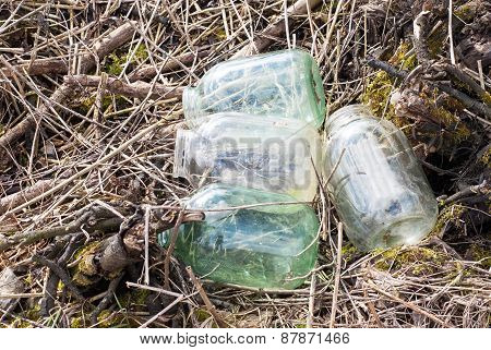 Empty glass jars near the forest