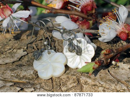 Bone Earrings On The Nature Background