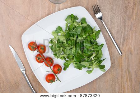 Vegetable Salad. Mache Salad And Tomatoes