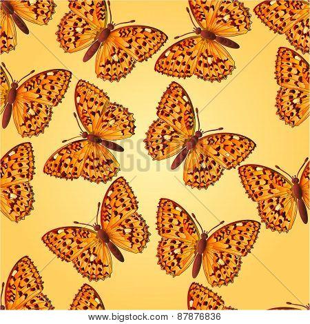 Seamless Texture Butterfly Argynnis Aglaja  Vector