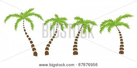 Set of Palm trees, isolated vector illustration