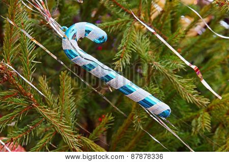 Traditional Santa Cane On Green Spruce Branch.