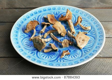 Dried mushrooms on color plate on wooden background