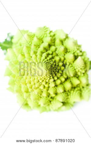 Roman Broccoli Close Up Selective Focus Isolated On White Background