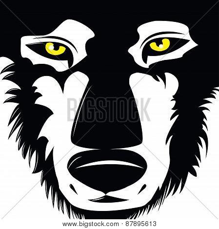 Vector Wolf Head