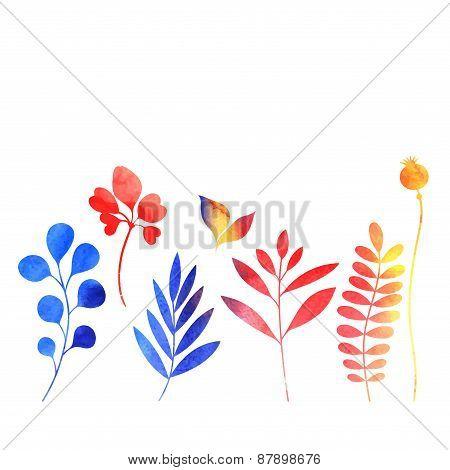 Set Of Watercolor Plants
