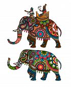 picture of indian elephant  - Indian decorated elephant with rider Maharaja - JPG