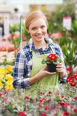 picture of greenhouse  - people - JPG