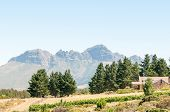 picture of south-western  - The Helderberg  - JPG