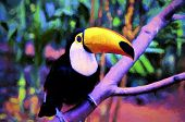 pic of bird paradise  - Colorfull oil painting of toucan bird - JPG
