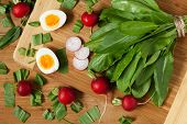 stock photo of radish  - Healthy spring vegetables - JPG