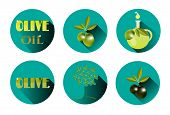 picture of olive shaped  - Set of six icons with olives - JPG