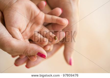Mothers Hand Cupping Her Childs Hand On Which Ladybug Is Sitting