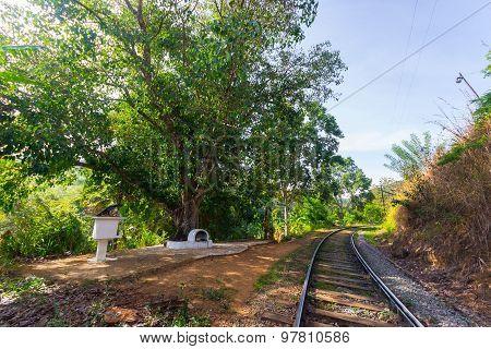 Obsolete Railroad In Sri Lanka