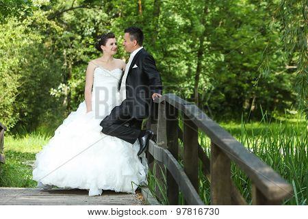 Wedding Photo On Wooden Bridge In Nature