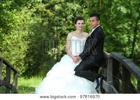Newlyweds On Wooden Bridge In Nature