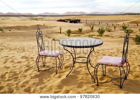 And Seat In   Morocco    Africa Yellow Sand