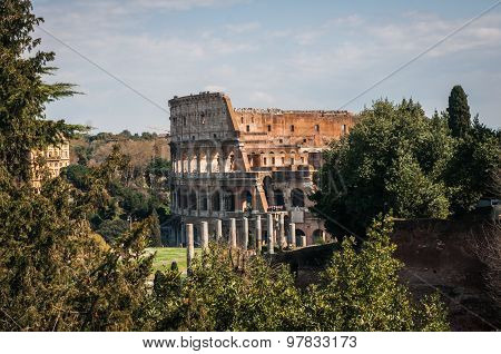 Ruines Of Colloseum
