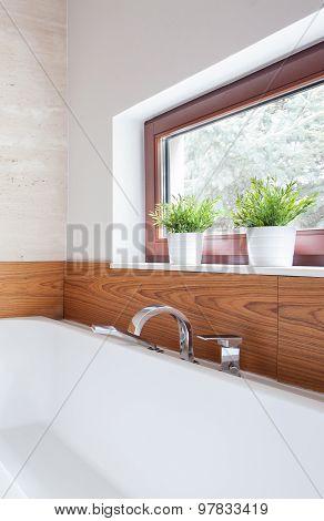 Bathtub With Silver Tap