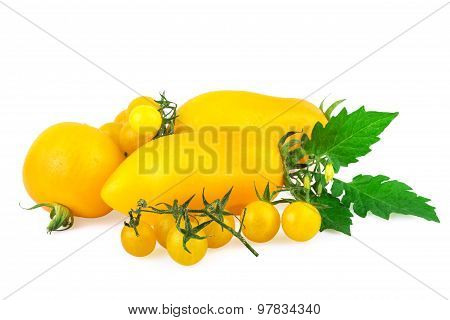 yellow tomato tomatoes with green leaf isolated on white