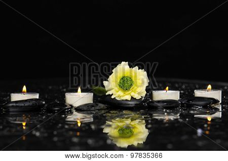 Set of ranunculus with candle on therapy stones