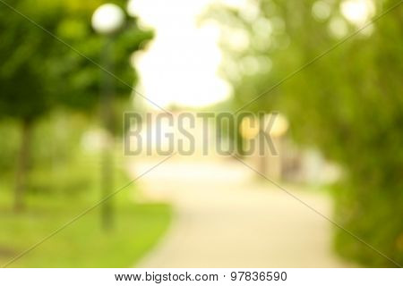 Blurred natural background