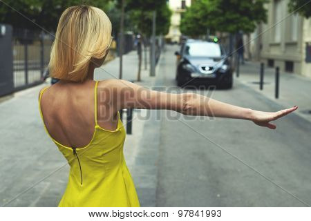 Back view young businesswoman calling taxi auto standing on the road with trees