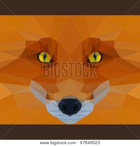 Wild Fox Stares Forward. Abstract Geometric Polygonat Triangle Illustration