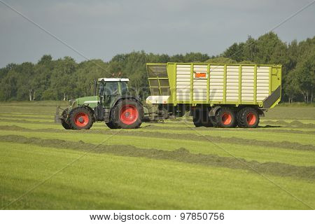 Agriculture, Transport Of Cut Grass With Green Tractor And Grass Trailer.