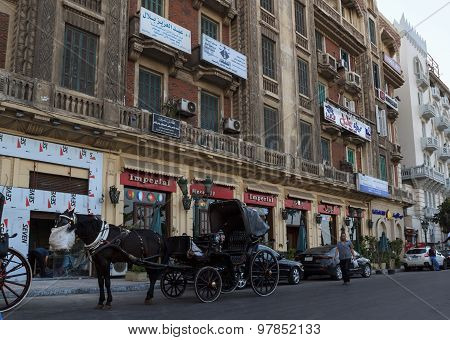 Horse-drawn Carriage In The Downtown Of Alexandria, Egypt