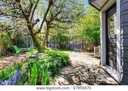 Amazing Back Yard With An Abundance Of Greenery.