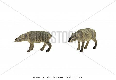 Isolated tapir toy