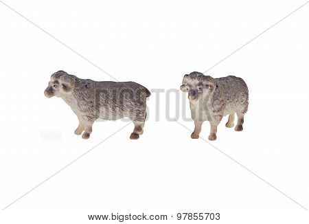 Isolated sheep toy
