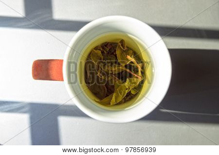 A Cup Of Green Tea In Natural Lightining