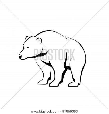 silhouette bear