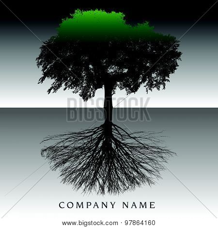 Ethereal Tree Roots Background