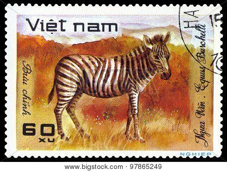 Vintage  Postage Stamp.  Zebra.