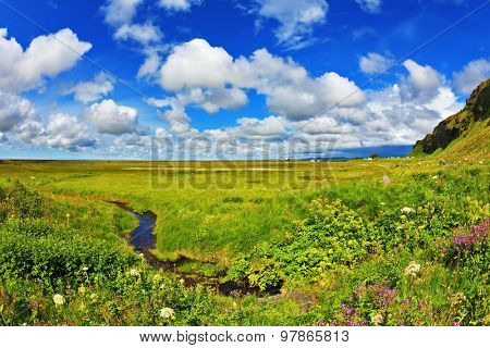 Green fields and streams near the giant ice plateau. Iceland in July